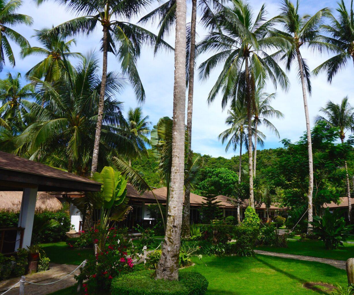 Cadlao resort El Nido - 1 (3)