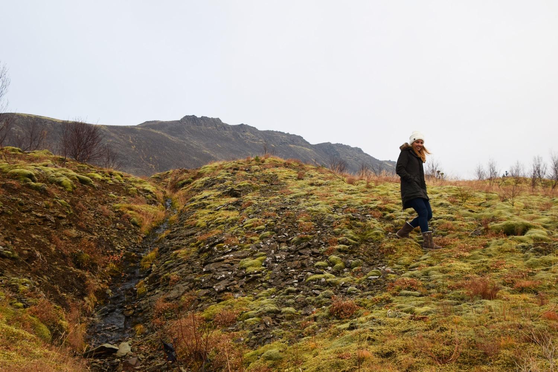 Stopover in IJsland moslandschap