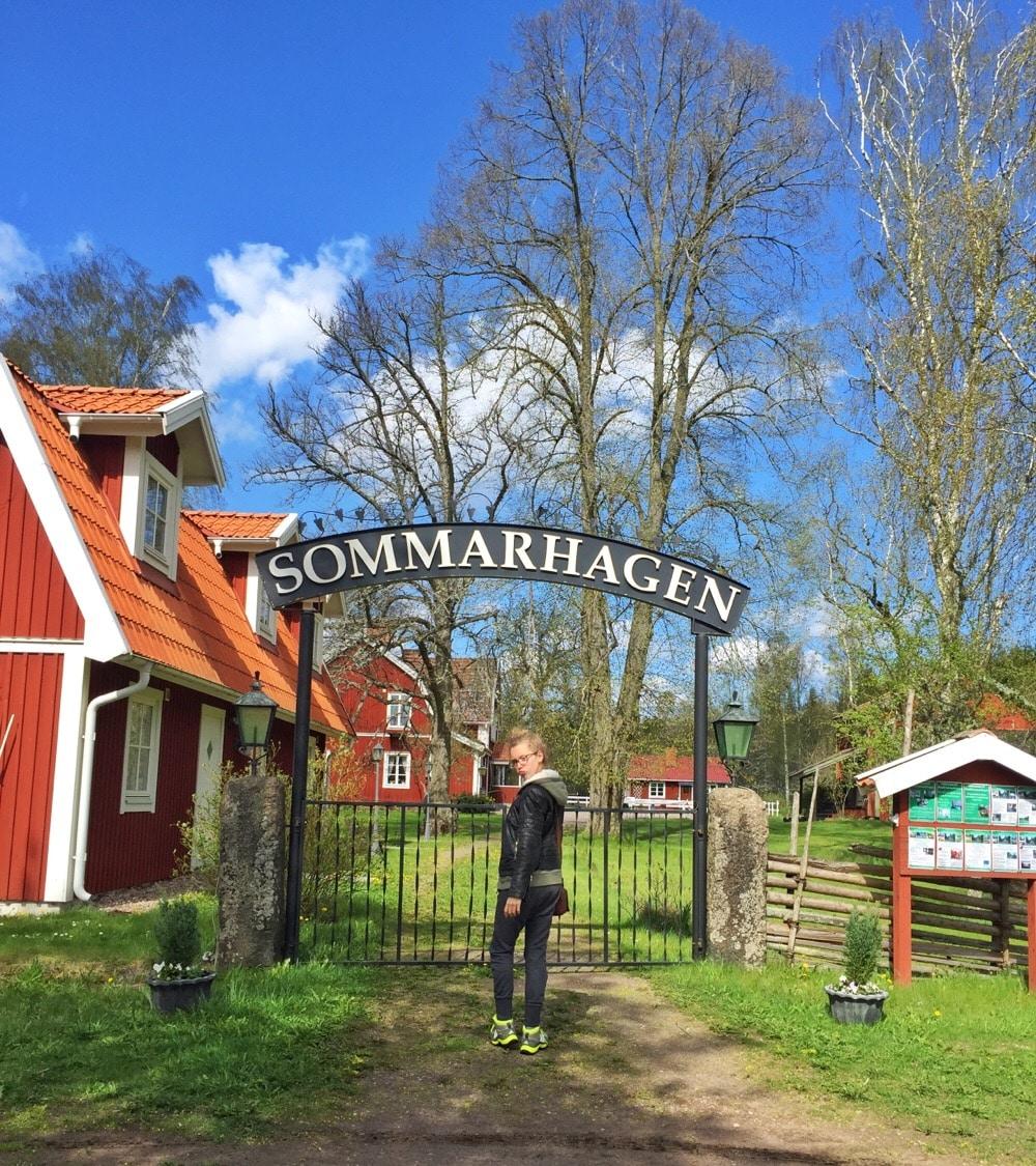 Sommarhagen Zweden