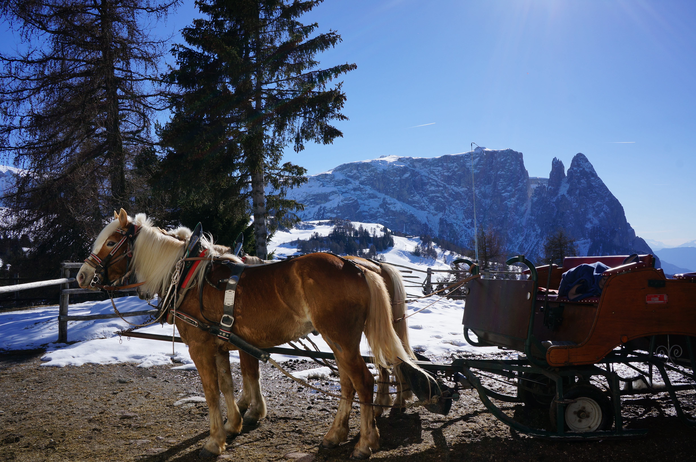 Zuid Tirol