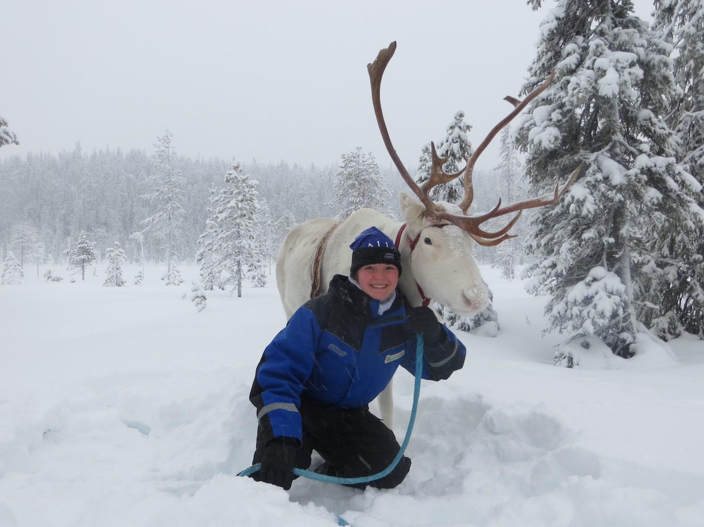 Lapland rendiersafari