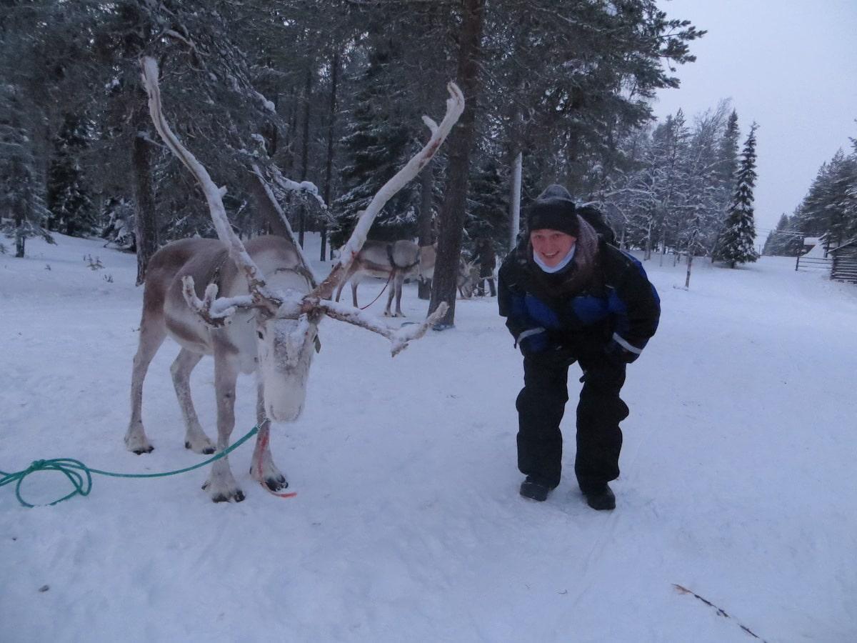 Lapland salla