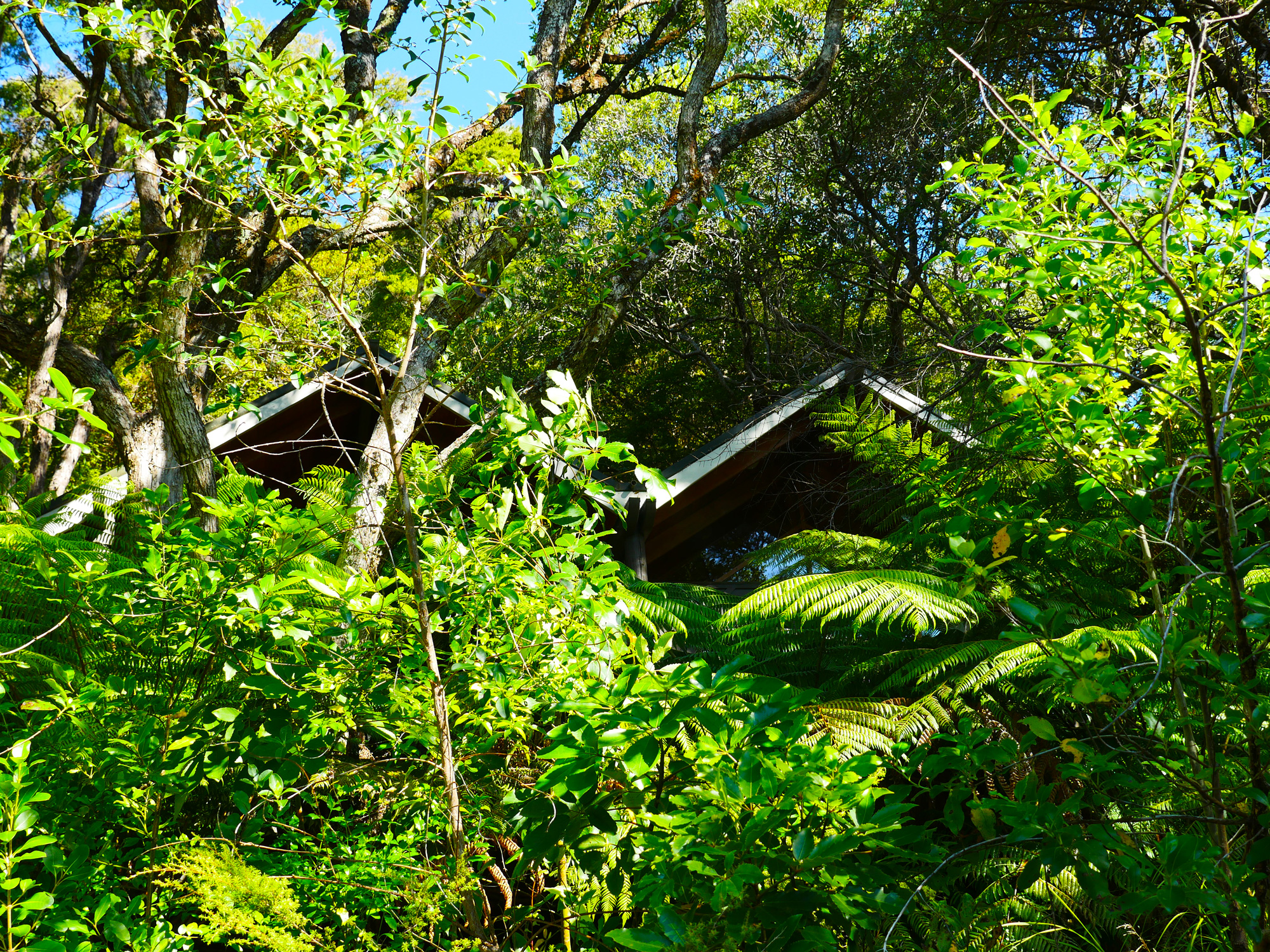 Puka Park Resort Pauanui-11