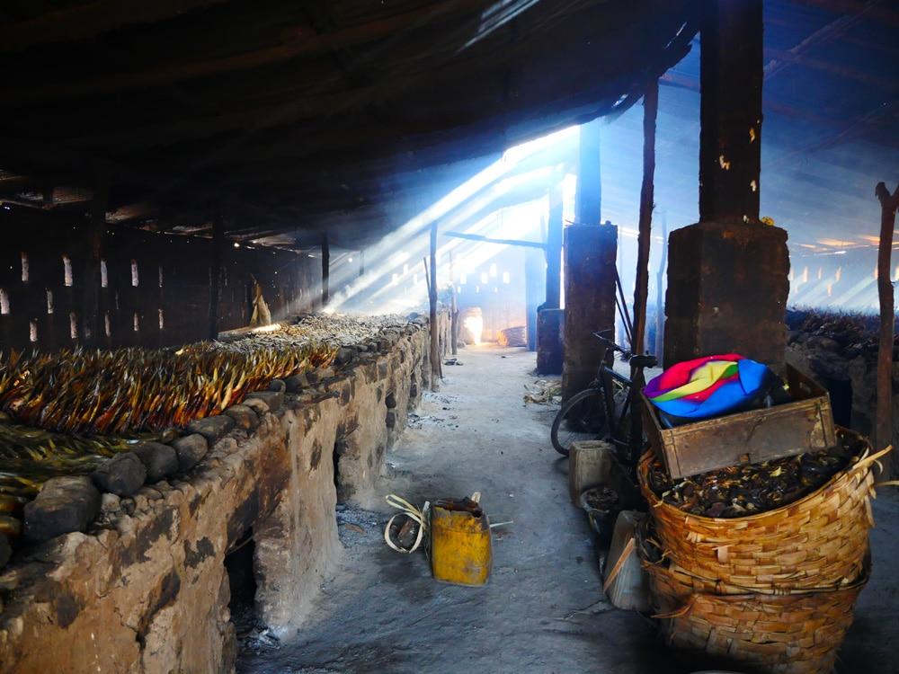 Tanje Fish market 5